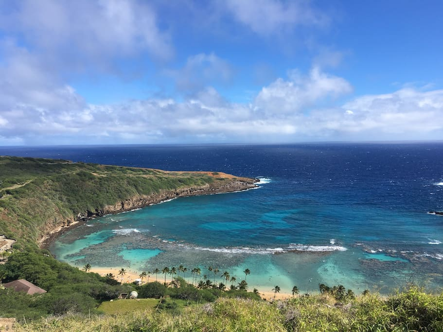 15 minute drive to one of the best snorkeling spot Hanauma Bay!