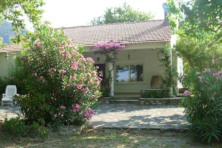 Goitia | Seaside villa | Skaloma Nafpaktos - Marathias - House
