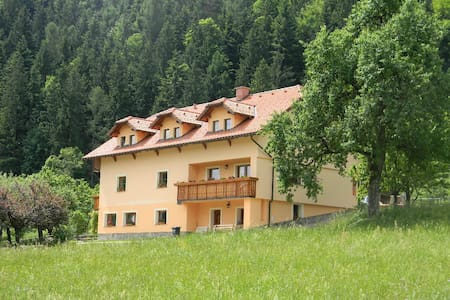 Ecological- tourist farm Kolar - Ljubno ob Savinji - Apartment