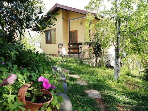 Casa Verde villa