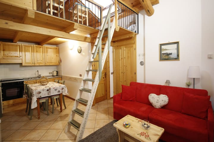 Romantic Studio Flat,near Bormio - Valdidentro - Appartement