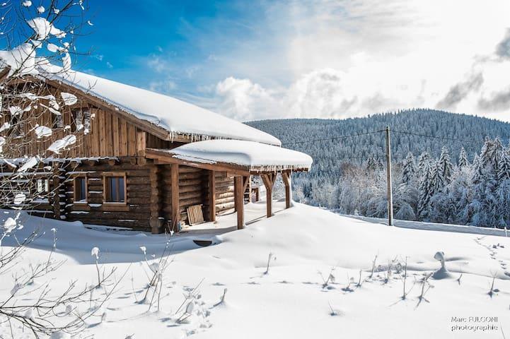 Chalet Serenity - Liézey - Dağ Evi