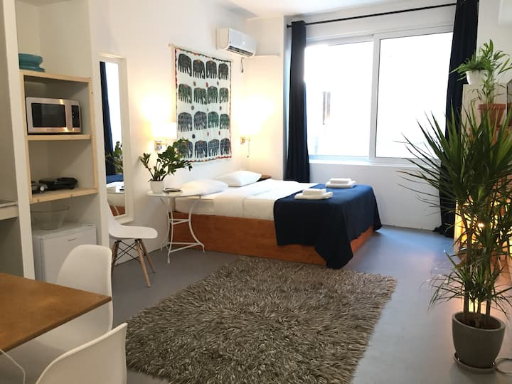 Athens Urban Surfer's Homely Syntagma studio