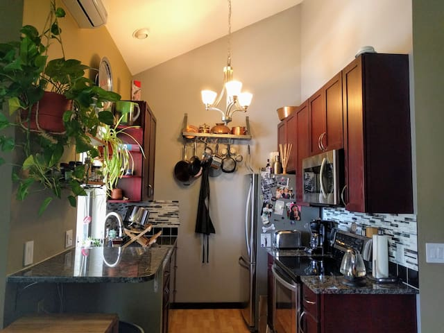 Modern Spacious Comfy fully-renovated 1 bed condo