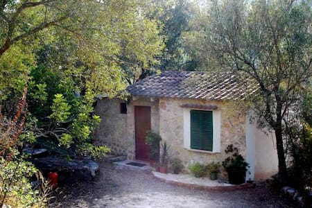 'Es Olivo'  Private country cottage - 索爾拉