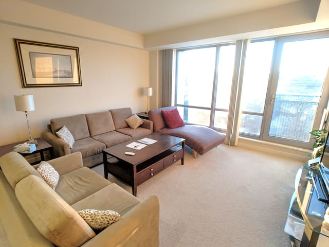 Large 1 Bed  Overlooking Charles River, Modern Bld