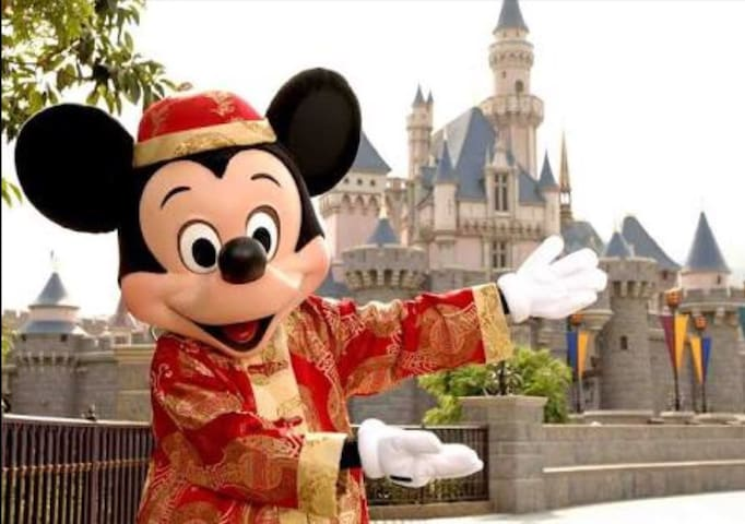 Disney land by bicycle or bus 20min no extra fee