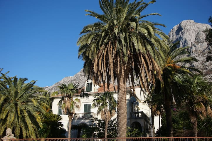 Palace, tropical garden and beach