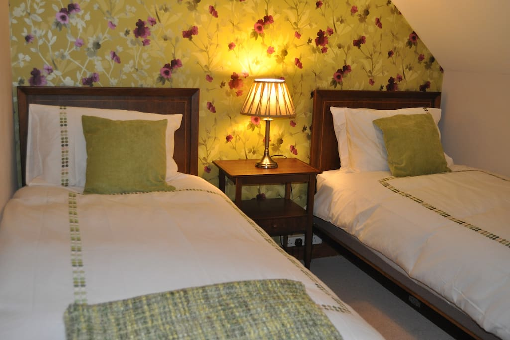 The Queen Méabh, twin room with separate guest bathroom