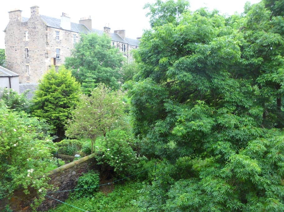View of the garden from flat