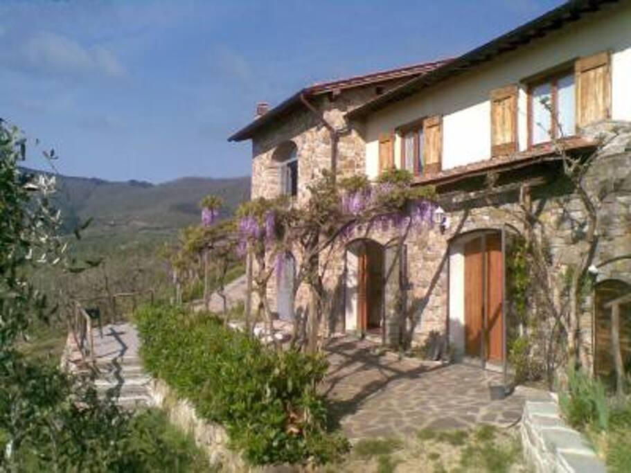 A charming farmhouse in chianti houses for rent in for Rent a house in tuscany
