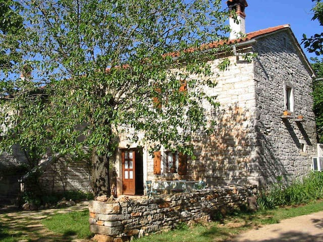 House Ivela traditional stone house - Pazin - Ev