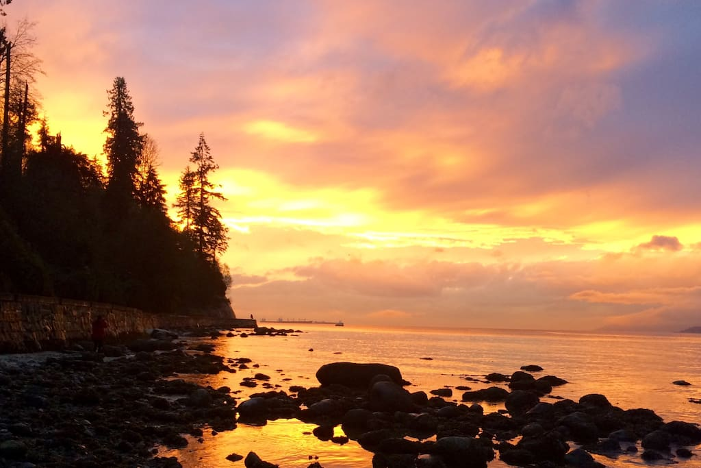 Sea wall walk around Stanley Park. (Access to sea wall via Sunset beach a 1 min walk from apartment)