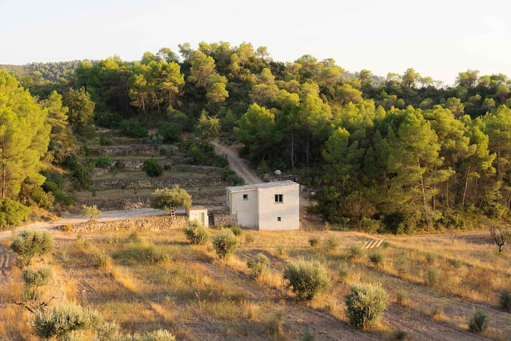 Poppy House, nestled on a tranquil ecological farm