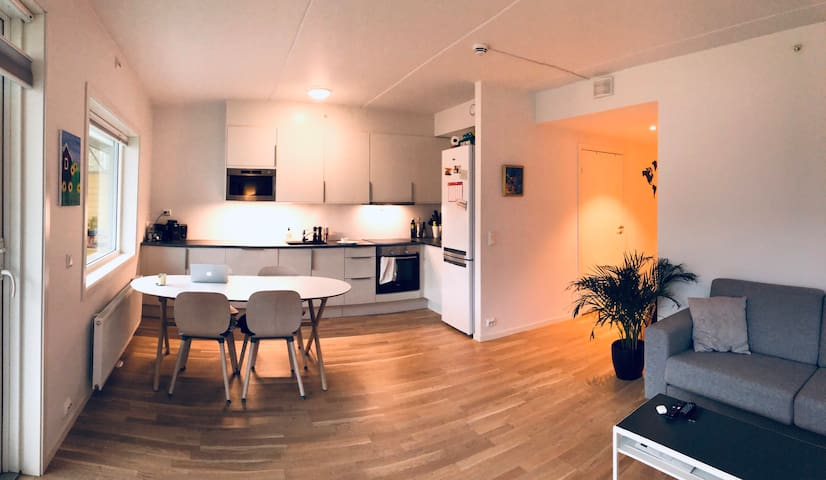 Modern two bedroom apartment close to everything!