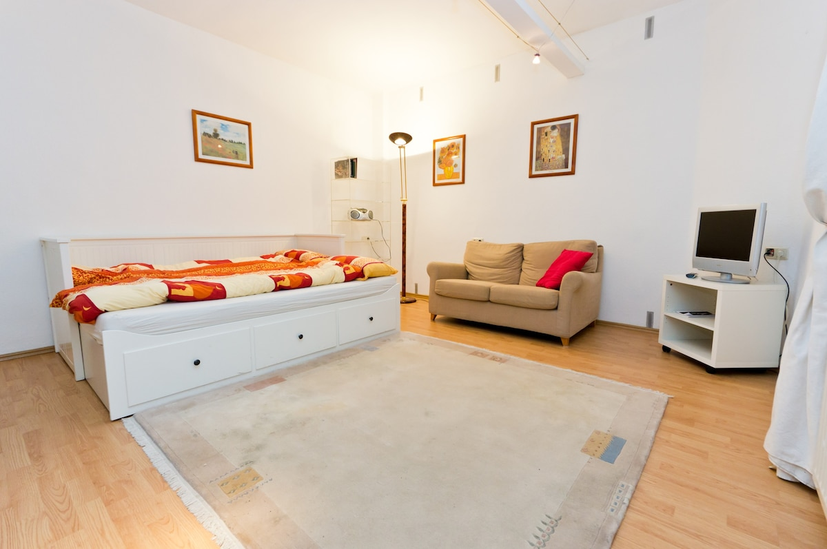 Awesome Beautiful Basement Apartment 2 Rent   Flats For Rent In Frankfurt, Hesse,  Germany