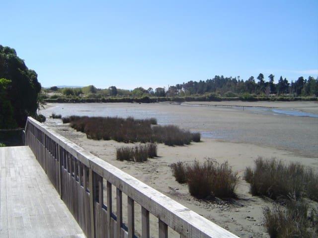 'te wai tahi' maori for waters edge - Mapua - 一軒家