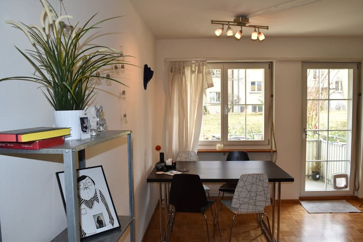 Cozy apartment in city of Zurich - Zuric - Pis
