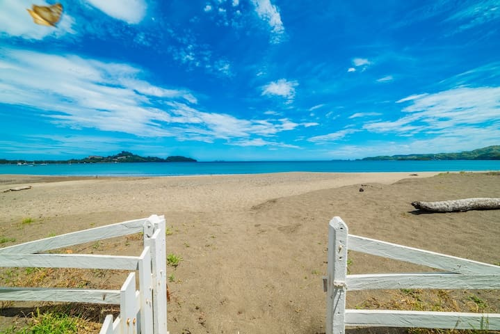 Beachfront, Pool, Sunset, Bird Watcher's Paradise