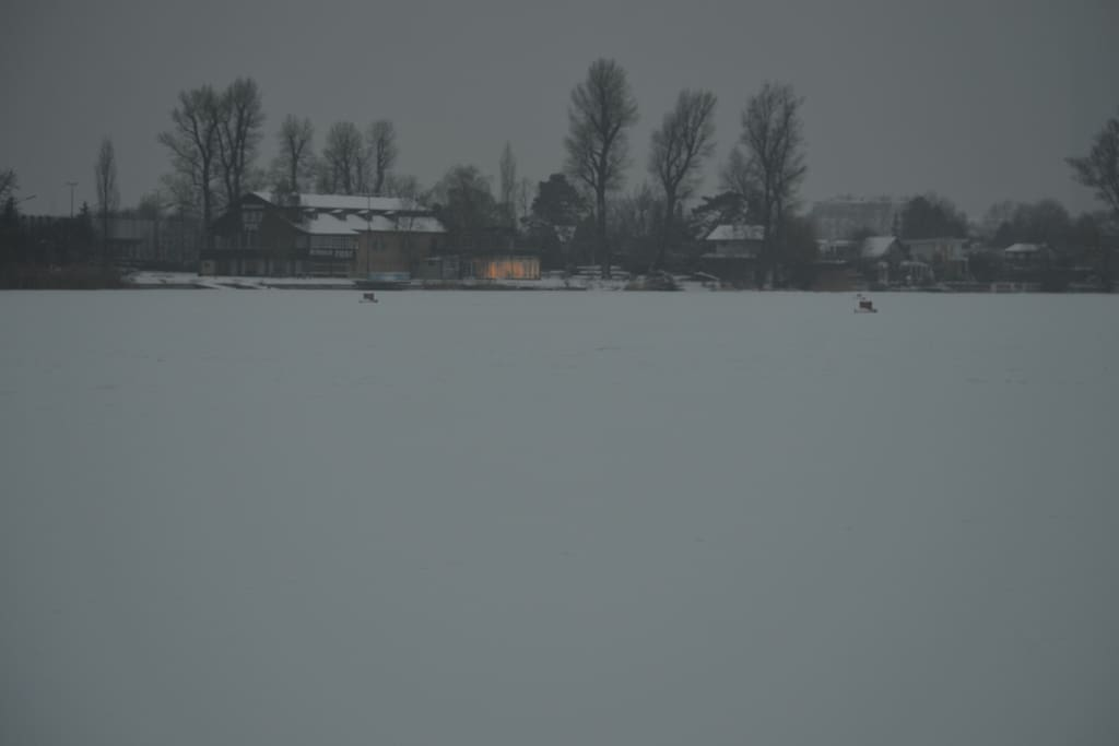 "lake ""Alte Donau"" in winter"