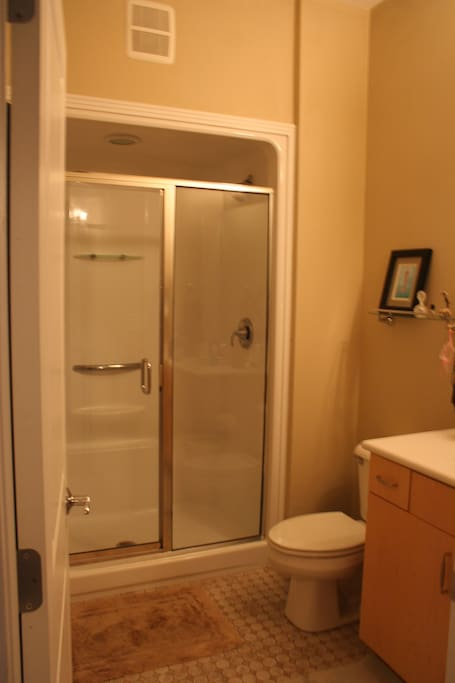 Master Ensuite bathroom includes walk-in shower