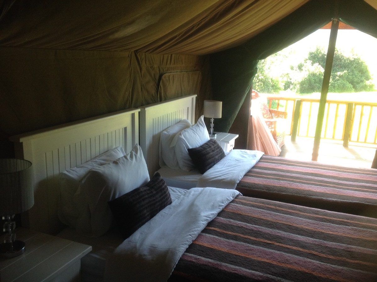 Plus private Bedroom 1 with hair dryer fan tea and coffee making facilities. Plus private : bedroom tents - memphite.com