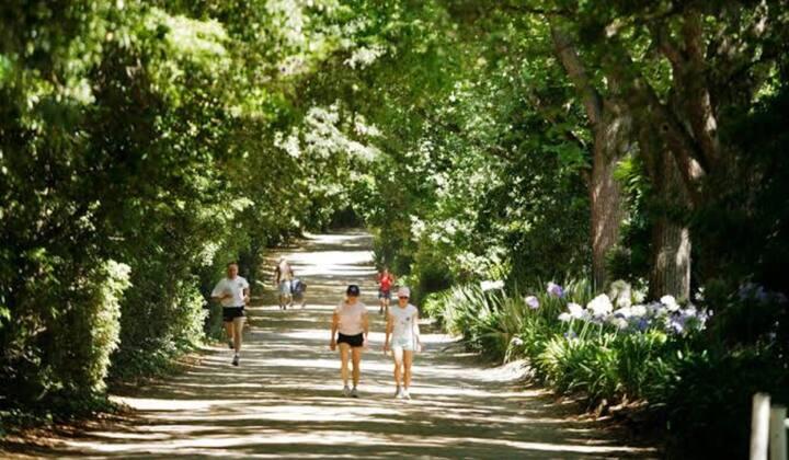 Gorgeous Botanic Gardens Precinct Gem!!