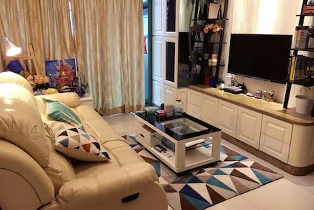 warm apartment in LuoWu罗湖口岸火车站五分钟