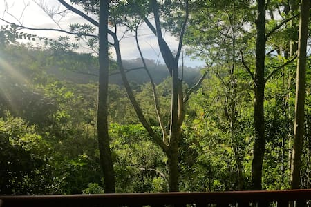 Rainforest Retreat atop a Glorious Mountain - Mount Glorious - Pensió