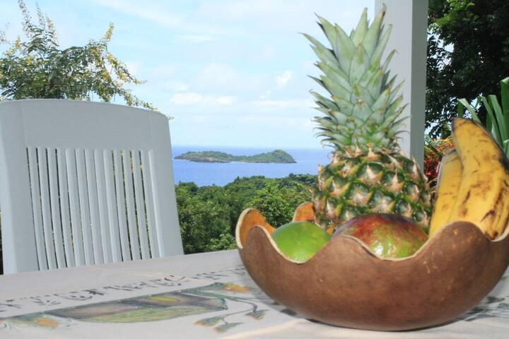 Villa 120m², 3 ch/8 p piscine, vue mer, PMR - Bouillante - Villa