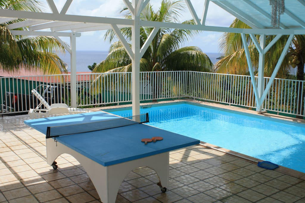 Espace piscine commun, tennis de table raquettes fournies.