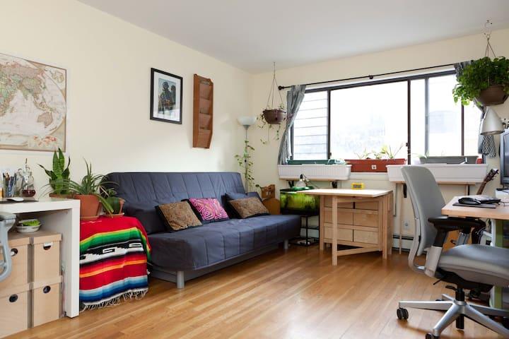 Private Room in Manhattan - New York - Apartment