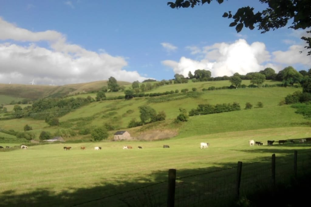 View from road up to Family holiday Cottages