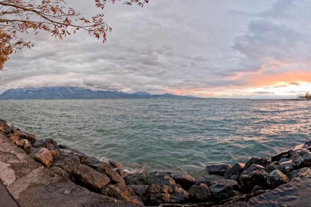 Les rives fascinantes du lac Léman : de Lutry à Morges, le chemin serpente entre rives du lac et jardins soignés, le long des plages sauvages ou des quais fleuris, sur près de 15 km.