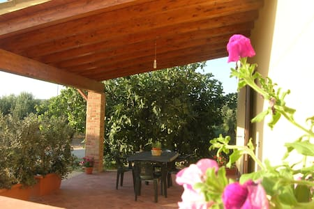 Sciacca: NEW HOUSE BETWEEN THE OLIV - Sciacca - Dom