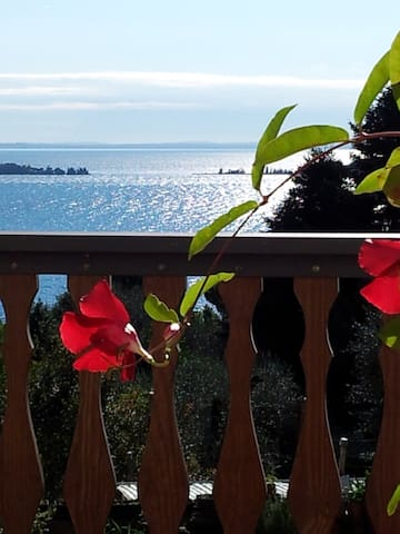 Close to nature ... near you  - Gardone Riviera - Lejlighed