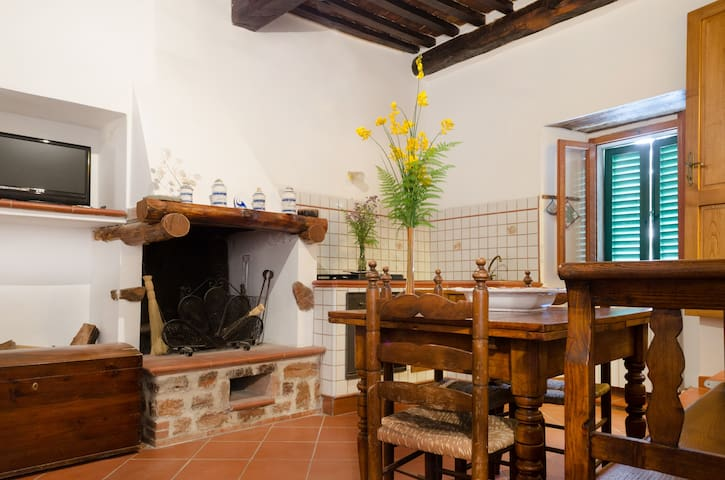 Appartamento nel Castello di Sasso - Sasso Pisano - Appartement