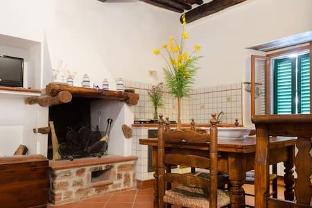 Appartamento nel Castello di Sasso - Sasso Pisano - Flat