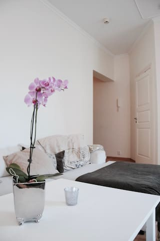 Nice and Cozy 3BR Apartment - Bergen - Apartamento