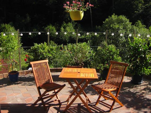 Ferienwohnung in Schönau bei Heidelberg - Schönau - Apartment
