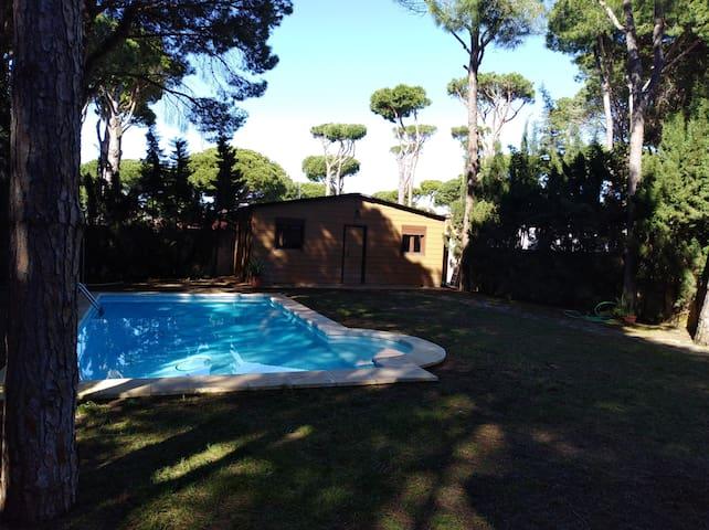 Magnífico chalet con bungalow en jardín