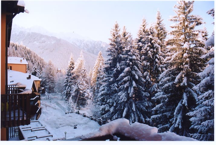 Mountain flat in the Italian Alps - Ponte di Legno - Pis