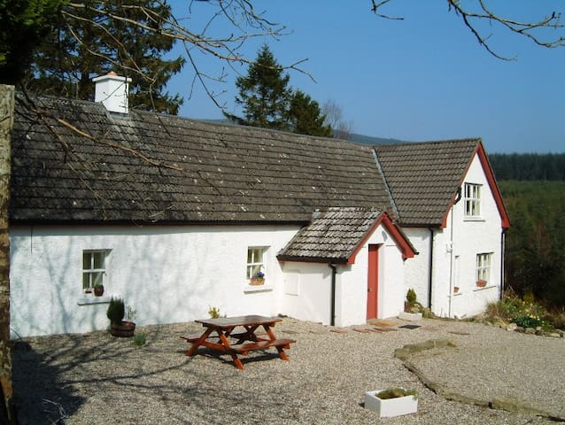 Beautiful Restored Wicklow Holiday Cottage - Aughrim - Stuga