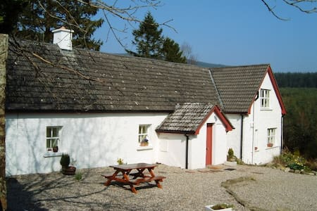 Beautiful Restored Wicklow Holiday Cottage - Aughrim - Srub