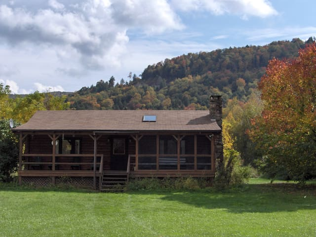 Catskill Mountain Riverside Cabin - Downsville - Hytte