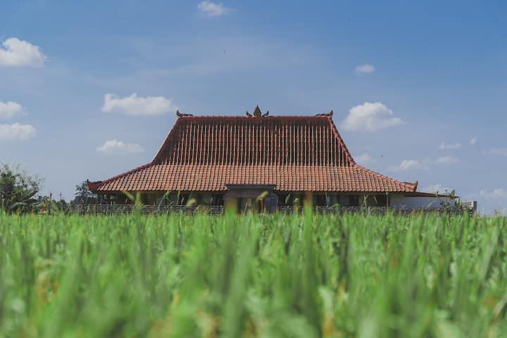 Luxurious 1 Bedroom home in lush Ubud rice fields