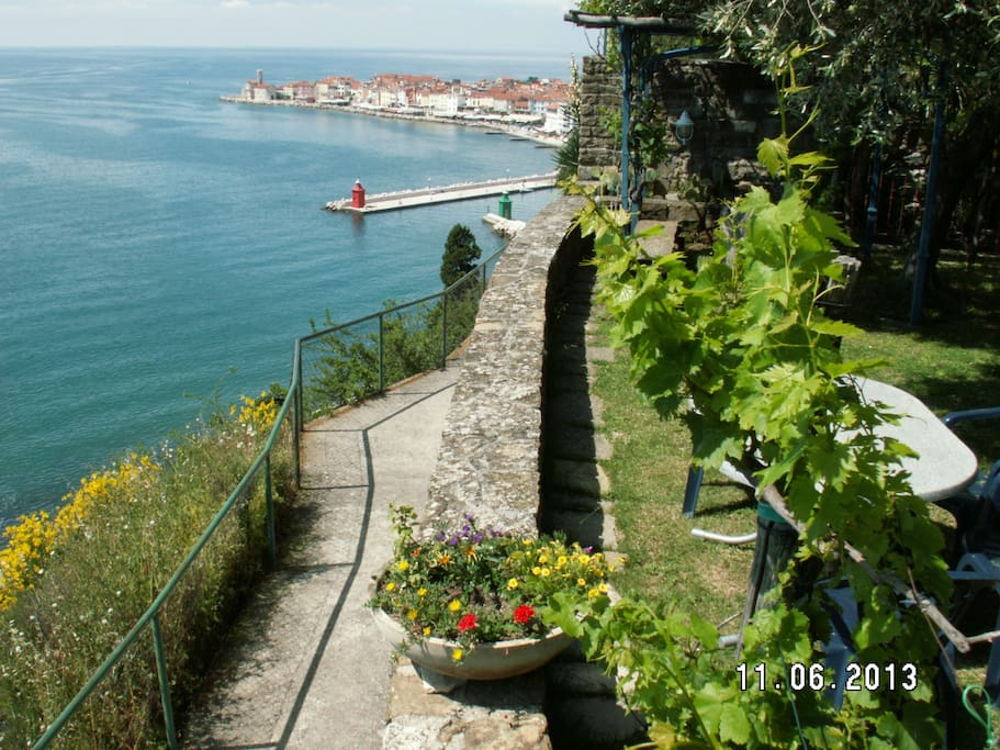 View of the city of Piran, only a 5 minute walk away.