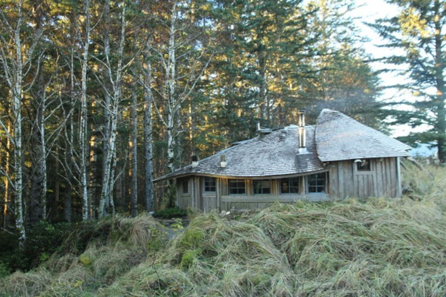 Sheltered by spruce trees and nestled into the sand dune.