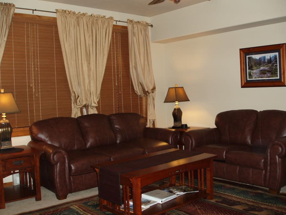 Family Room Leather Sofas