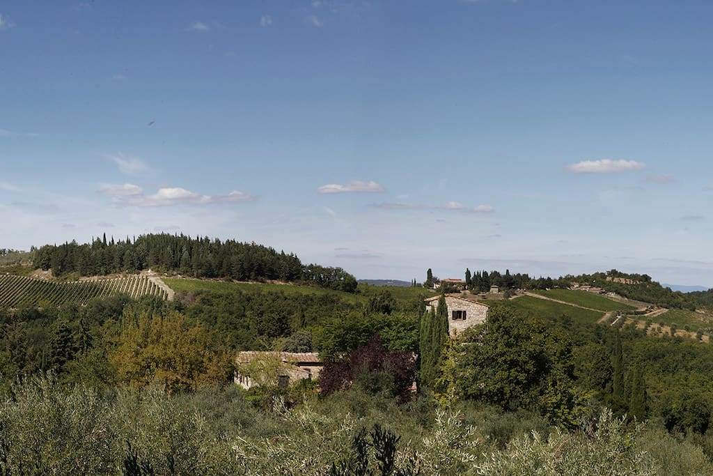 View over Nittardi & the valley